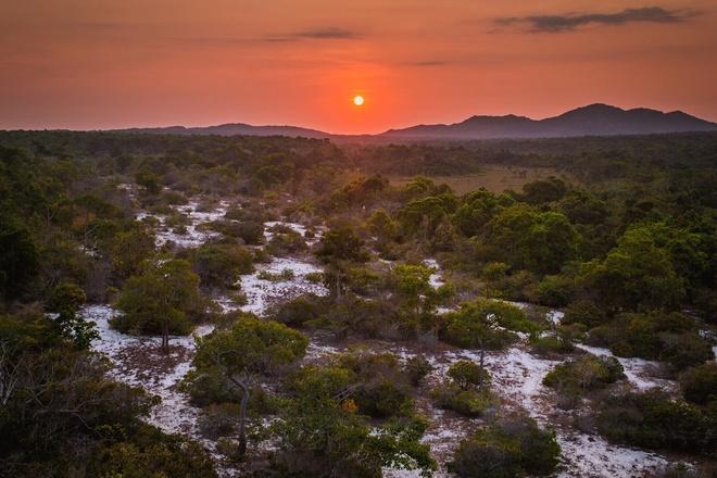 Chuyến khám phá rừng bưng thị hoang sơ ở bình thuận trong 1 ngày