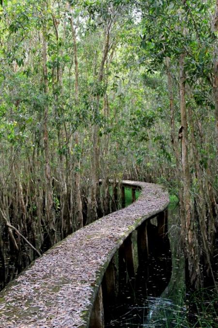 Tham quan khu du lịch sinh thái làng nổi tân lập