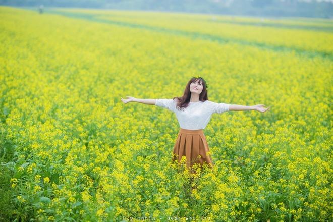 Mênh mông sắc vàng mùa hoa cải nở rộ ở thái bình