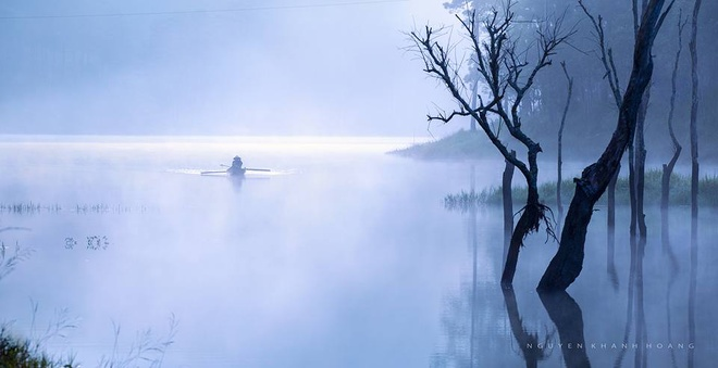 Đà lạt nhuốm màu huyền ảo lung linh trong sương sớm