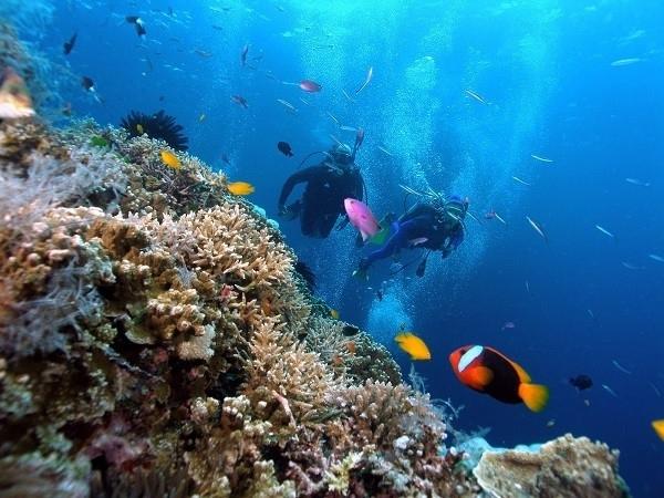 10 trải nghiệm du lịch nên check in chỉ có ở việt nam