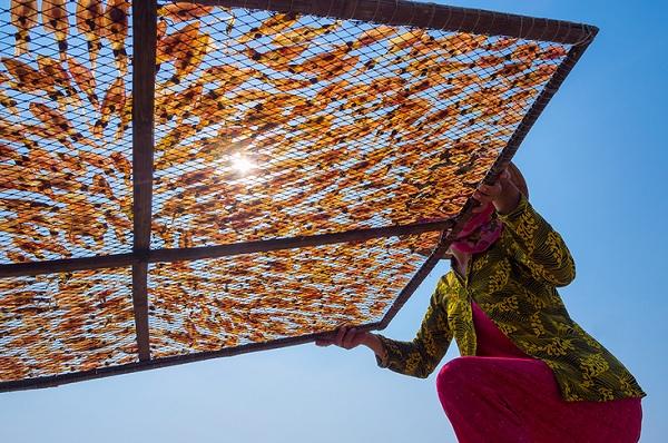 22 bức ảnh đẹp việt nam được vinh danh trên cẩm nang du lịch thế giới
