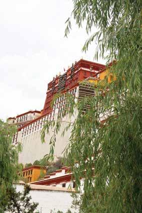 Tây tạng mùa hè nơi đỉnh cao