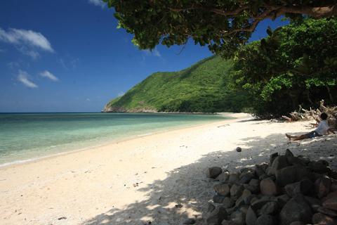 Xuân đẹp tĩnh lặng trên côn đảo