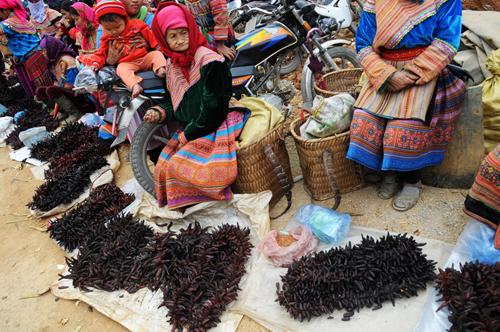 Chợ tết vùng cao đầy sắc màu