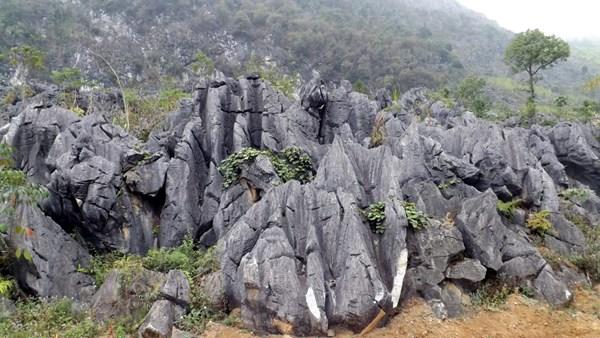 Khám phá một hà giang nơi sự sống nảy mầm trên đá