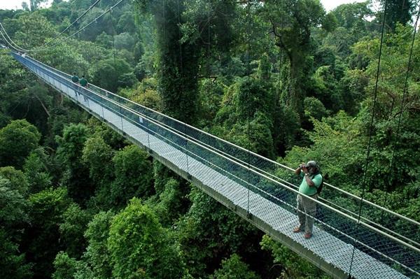 10 trải nghiệm du lịch miễn phí ở singapore