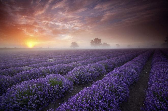 Chiêm ngưỡng những cảnh đẹp thiên nhiên khó tin trên thế giới