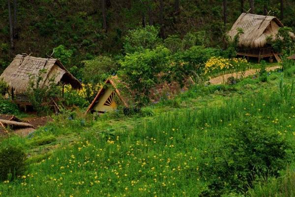 Khám phá làng cù lần xinh đẹp giữa núi rừng langbiang