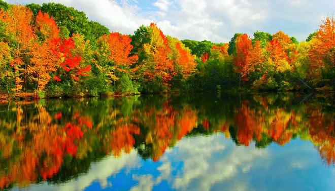 Loạt ảnh đẹp mùa thu vàng trên khắp nước mỹ