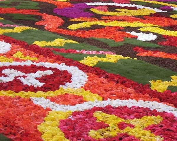 Chiêm ngưỡng thảm hoa khổng lồ ở brussels