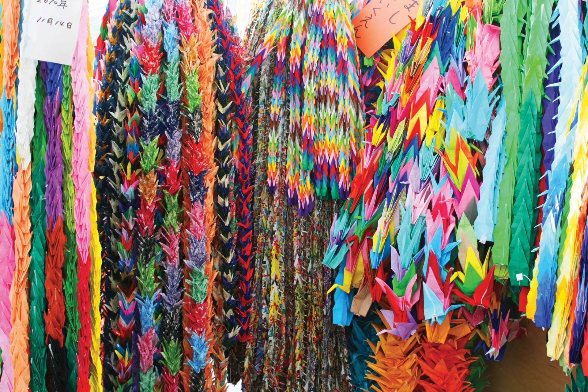Ảnh đẹp sắc màu lễ hội trên khắp thế giới