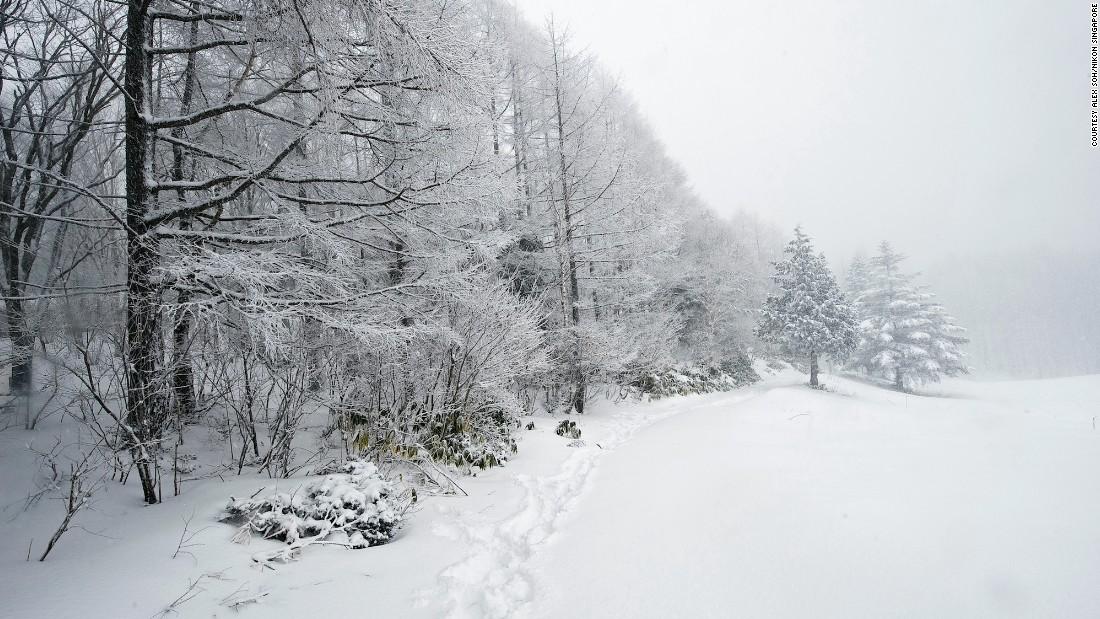 bí quyết chụp ảnh tuyết rơi như thợ chuyên nghiệp