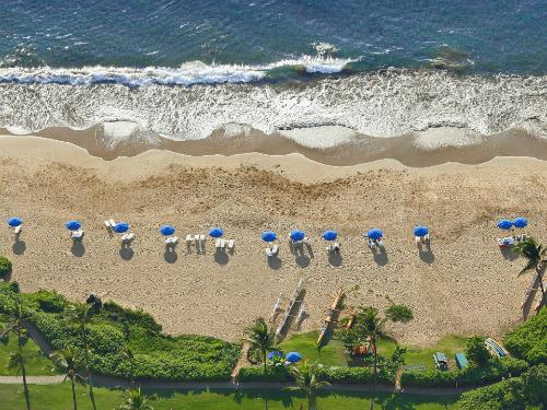 Du lịch hawaii có gì mới trong năm 2015