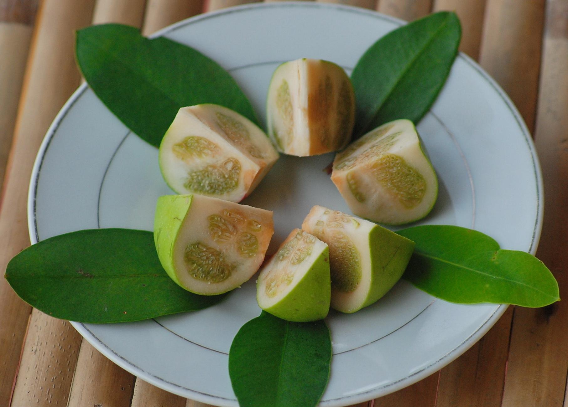 Món ăn lạ miệng từ trái bần