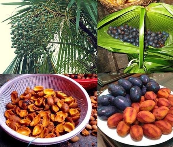 Những món ăn nổi tiếng trên mảnh đất thiêng phú thọ