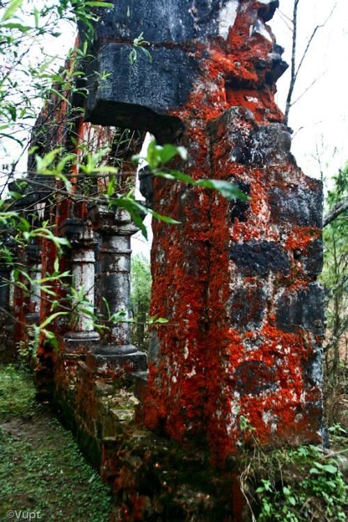 Khám phá tu viện cổ kỳ bí trên đỉnh sa pa