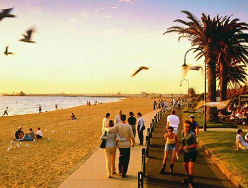 5 điều nên làm ở thành phố đáng sống nhất thế giới