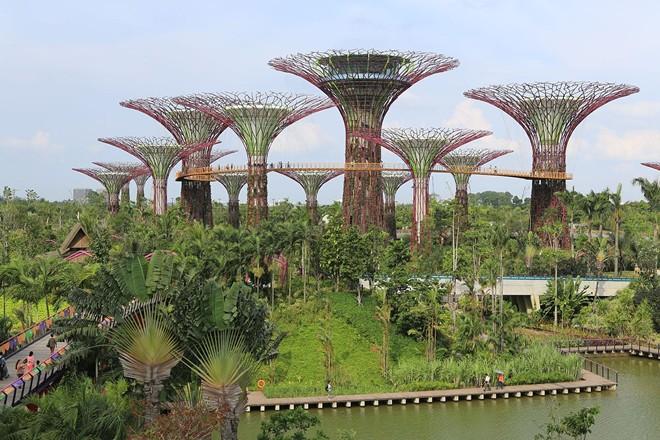 Singapore đô thị trong công viên khổng lồ