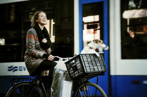 Sự thật ít ai biết về thủ đô amsterdam hà lan