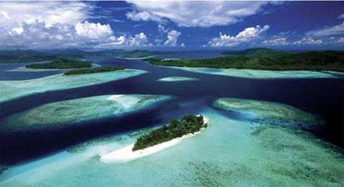 Hòn đảo sọ người và cách mai táng bằng kiến