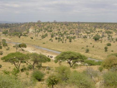 Những điểm đến không thể bỏ qua khi đến tanzania