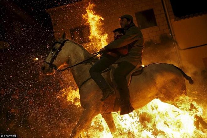 Lễ hội phi ngựa qua lửa độc đáo ở tây ban nha
