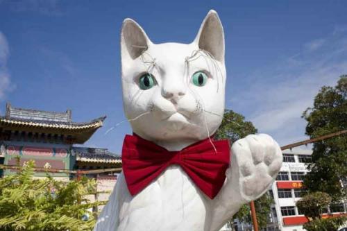 7 điểm đến cho người yêu mèo trên khắp thế giới