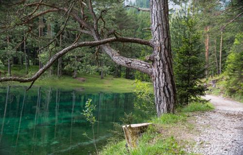 Cảnh hồ biến thành công viên theo mùa