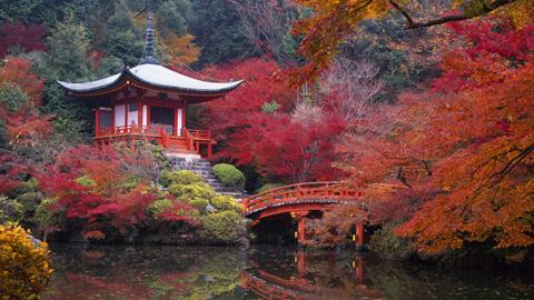 Hàng trăm suất du lịch giá rẻ mùa thu