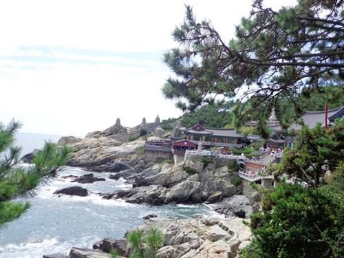 Chiêm ngưỡng ngôi chùa bên bờ biển đẹp nhất hàn quốc