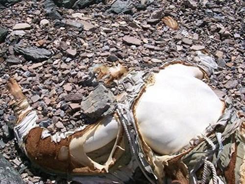 Khiếp sợ cảnh những xác chết cứng đơ nằm rải rác trên đồi tuyết