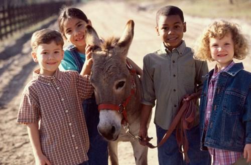 Những chuyến du lịch nên cùng con tham gia trước khi lên 10 tuổi