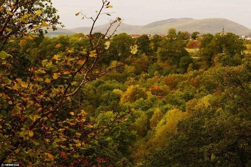 Những bức ảnh mùa thu khiến bạn chỉ muốn xách valo lên và đi