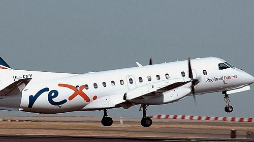Kangaroo bỏ mạng vì gặp tai nạn với máy bay