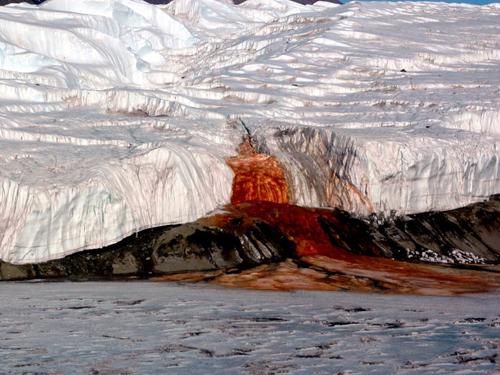 Dòng sông khóc ra máu ở nam cực