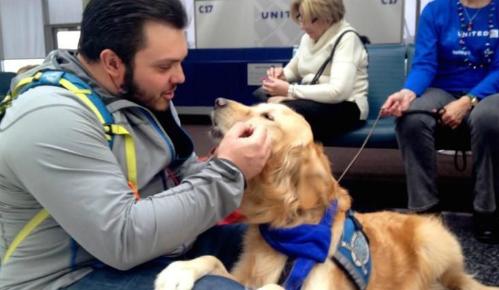 Hãng bay sử dụng chó để trấn an hành khách bị hoãn chuyến