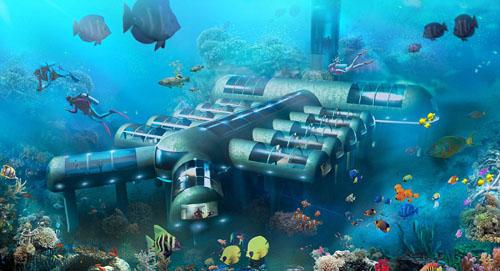 Khách sạn chi 20 triệu usd để du khách ngủ cùng cá
