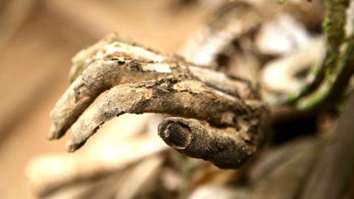 Tục hun khói xác chết ở nơi từng ăn thịt người