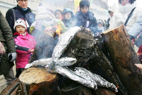Hàng nghìn người tay không mò cá dưới hồ băng ở hàn quốc