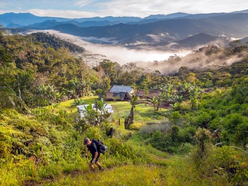 Nư du khach bi xâm hại trong rưng ở papua new guinea