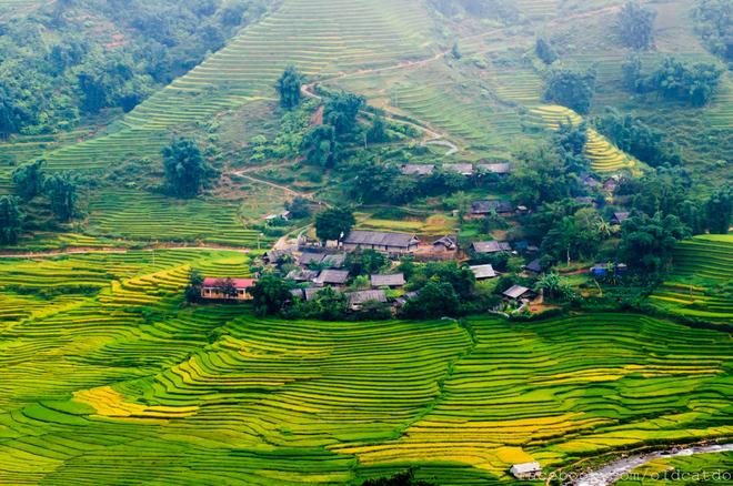Ruộng bậc thang sa pa vào danh sách những nơi đẹp nhất thế giới